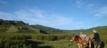 Mongolsk hesteeventyr